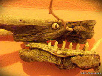 vymcreaciones, dragon, vymcreaciones.com, driftwood dragon, dragon de madera, madera de mar, driftwood art