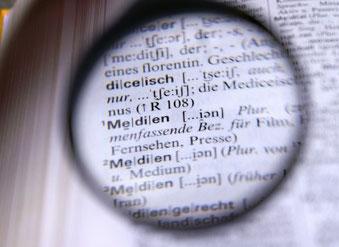 Lektorat Lupe Medien Rechtschreibprüfung Fehlersuche Korrekturlesen