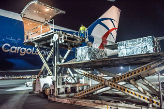 CLA plans to operate up to five 747 freighter aircraft. Number three just arrived in Stansted – company courtesy