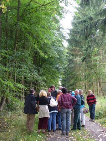 An der frischen Luft, erfüllt vom Duft des Waldes und der Pilze: Besprechung der Funde am Wegesrand