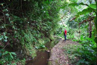 Shimbwe Bewässerungskanal