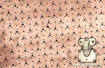 toile papier Louis Vuitton interieur de malle
