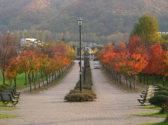公園奥の遊歩道
