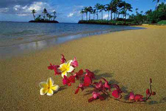 Hawaiian beach with  a creative arrangement of lei flowers