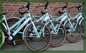 Foto:  Symbolfoto Mietbikes