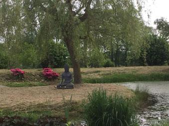 de prachtige tuin van centrum de Horst
