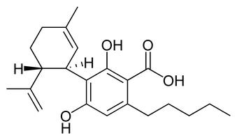 Cannabidiolsäure - CBDA