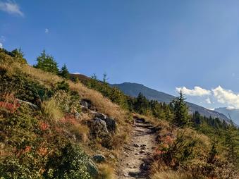 Gross Ruchen Nordwand, Bergtour, Hochtour, Uri, Klausenpass, Routenverlauf, Topo