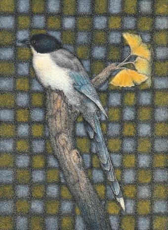 「オナガと銀杏」 細密ペン画 150×110㎜  216,000円(税・額込み)