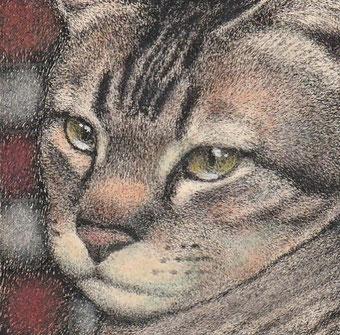 「猫の肖像」50x50mm 細密ペン画