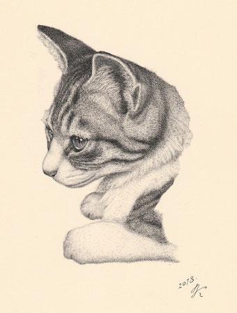 「猫の肖像15」 細密ペン画 220×180㎜