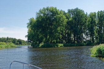Mecklenburg Eldedreieck