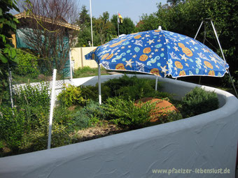 Schildkröten unterbringen Sonnenschutz Sonnenschirm