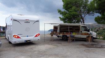Süditalien - mit Wohnmobil und Hund - fair4world