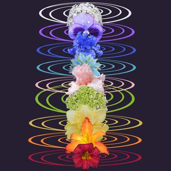 Die 7 Körper Chakra's in Ihren Farben