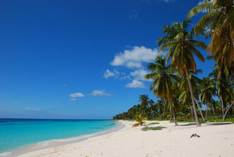 Isla Saona Strand