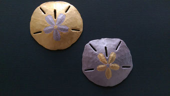 Sanddollars (Seeigelgehäuse) in vielen Variationen