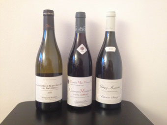 Les Baudines, Morgeot, Puligny-Montrachet