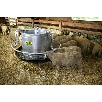 Agro-Widmer Stalleinrichtungen - Schafstalleinrichtungen und Klauenstände von Patura
