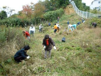 草を刈る市民ボランティアたち(平成15年)