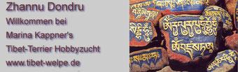 """Tibet Terrier-Zwinger """"Zhannu Dondru"""""""