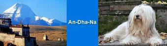 """Tibet Terrier-Zwinger """"An-Dha-Na"""""""