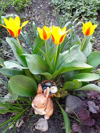 Tulpen mit Osterhase im Körbchen Schmuck von Bloody Brilliants