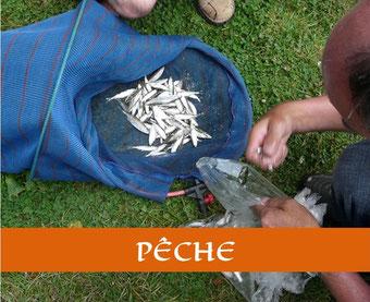 Pêche en Maine Coeur de Sarthe