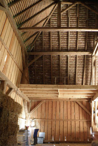 Apiculture-Beekeeping-Imkerei