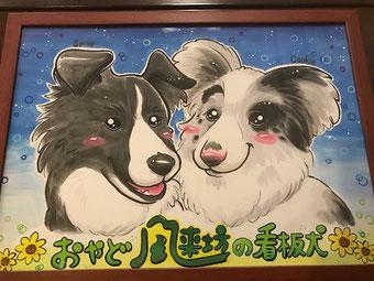 おやど風来坊の看板犬ボーダーコリーシロップ&クッキー
