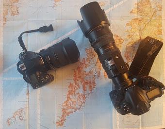 D600 + 15-30mm f/2.8 Tamron . D4S + 70-200 f/2.8 + TC1.4 Nikon