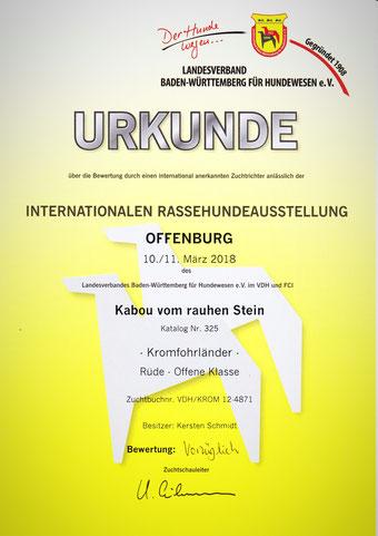 Kabous Urkunde von der 31. Ortenau-Schau Offenburg 2018