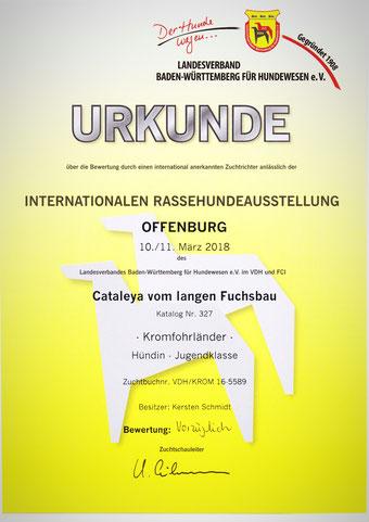 Cataleyas Urkunde von der Internationalen Rassehundeausstellung in Offenburg 2018
