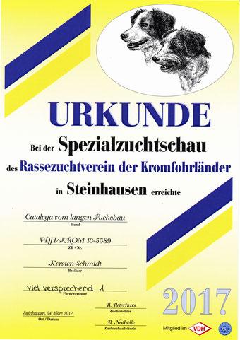 Cataleyas Urkunde von der Spezialzuchtschau in Steinhausen 2017