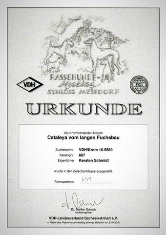 Cataleyas Urkunde von der 4. Nationalen Ausstellung in Meisdorf 2018