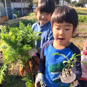 野菜が大好きな子どもたち