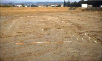 Pfostenstandpunkte (Hausgrundriss) bei archäologischer Ausgrabung