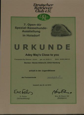 Open-Air-Ausstellung Hoisdorf Juli 2013