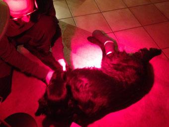 Rotlichtmassage