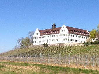 Seminarort für Kurse Schloss Hersberg, Immenstaad (Bodensee)
