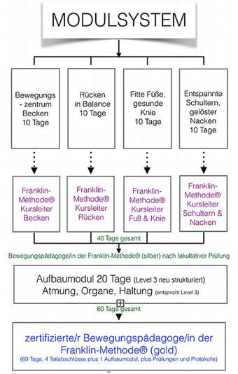 Modulsystem Franklin-Methode Kursleiter