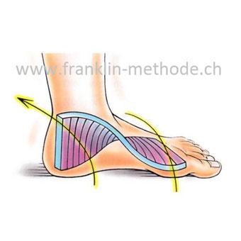 Fitte Füße-Gesunde Knie