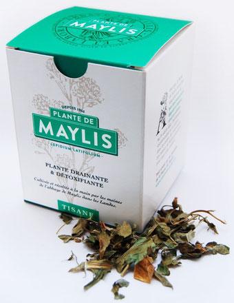 http://www.plante-de-maylis.com/