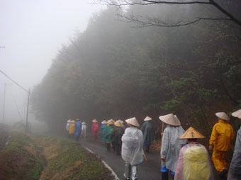 """雨の桜峠(我々は""""水の行""""と云ってます)"""