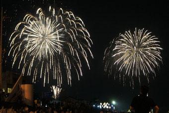夏の夜を彩る、花火の競演