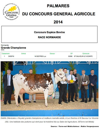 """La vache """"Didefix"""" de St Sauveur-le-Vicomte, grande gagnante du concours de race normande au salon de l'agriculture, 23/02/14"""