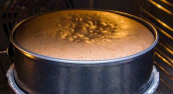 Buskuit dunkel selber machen dunkler biskuit Rezept