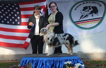 ASCD Show Westerkappeln 2017, 1. Platz unter Richterin Angela Kleinhans