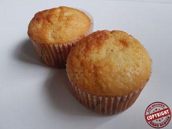 recette gâteau au yaourt sans gluten sans lactose