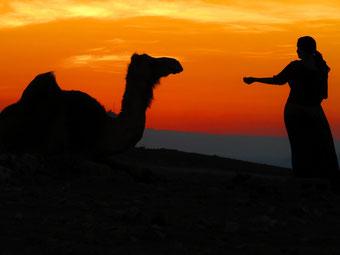 Oman Türkei Neuseeland Australien Weltumradlung Südamerika Afrika Europa Asien